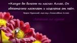 Лечение по Сунне: пророческая медицина