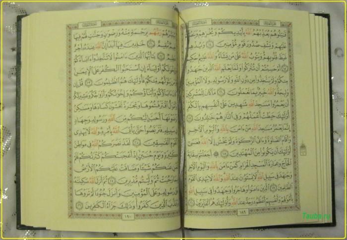 Коран это инструкция для человечества