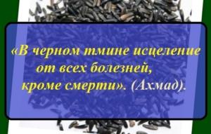 Черный тмин — полезные свойства и применение масла черного тмина