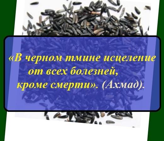 масло черного тмина для иммунитета