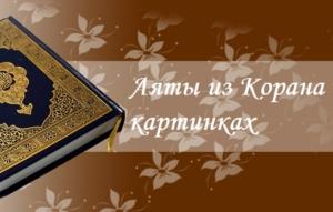 Аяты из Корана в картинках для напоминания