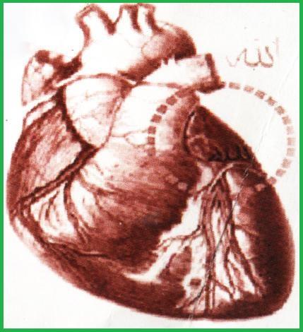 Имя Аллаха в сердце человека
