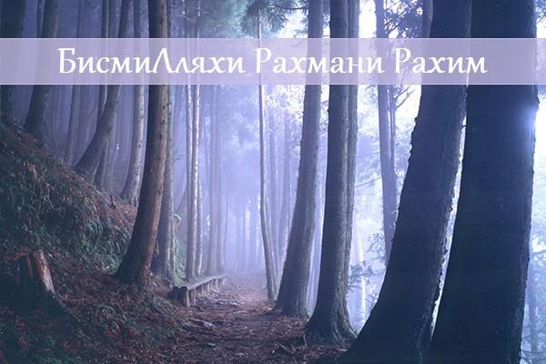 БисмиЛляхи р-Рахмани р-Рахим