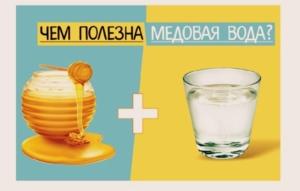Медовая вода натощак — невероятная польза сунны для организма человека