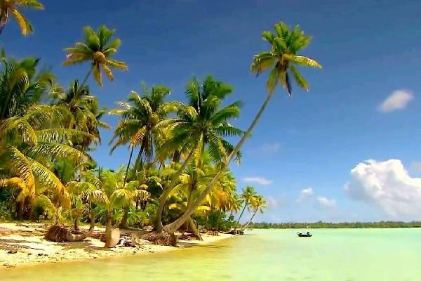Остров Таити Полинезия, 2019